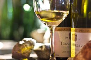 Árpád-hegy Pince borok Szerencsről
