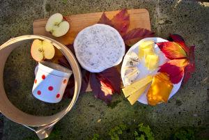 Őszi színek és ízek találkozása